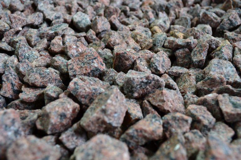 GRYS CZERWONY VANGA miniatura